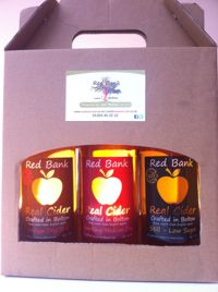 Gift Box Mix of Any Three Bottled Ciders